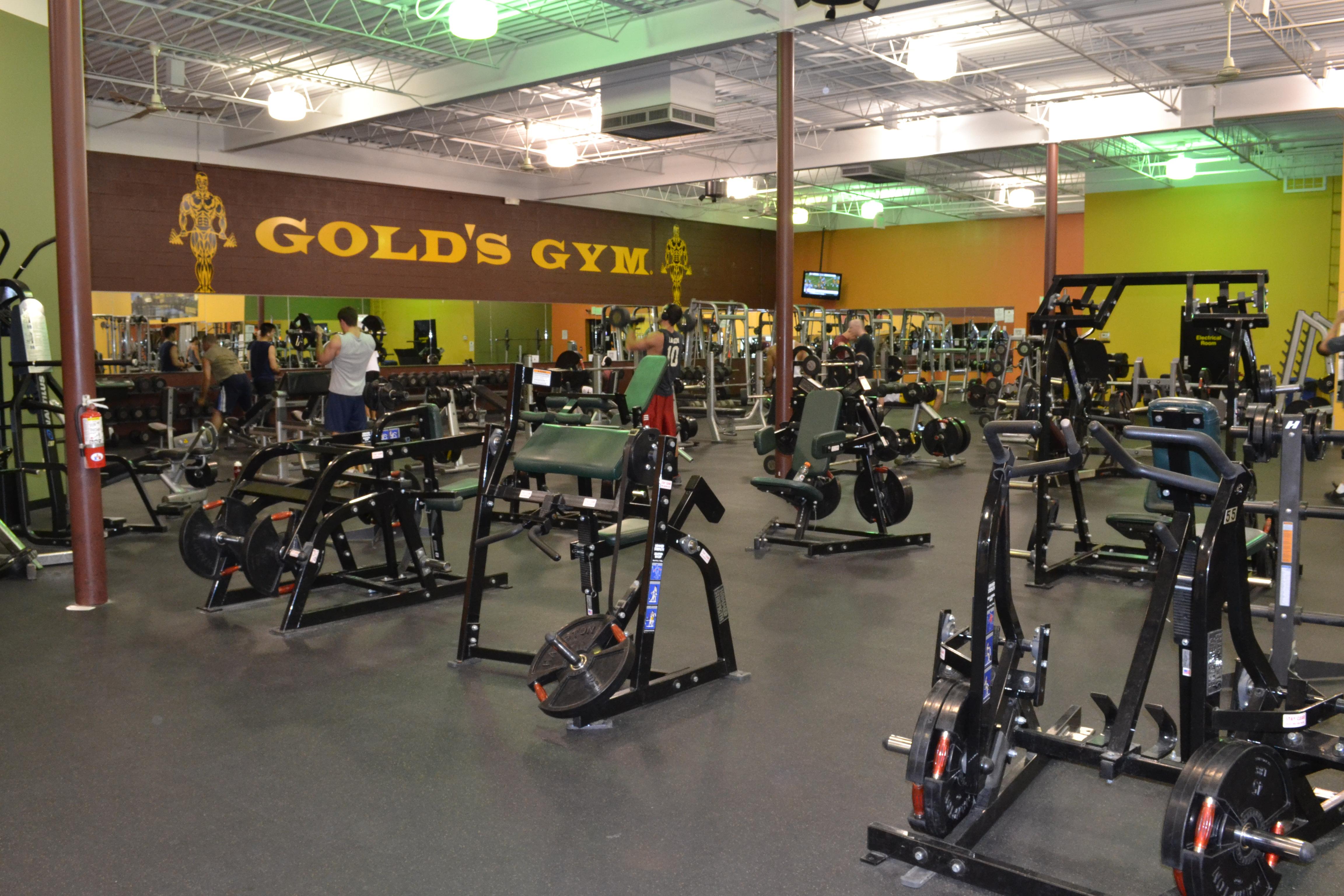stay profita golds gym - HD4608×3072